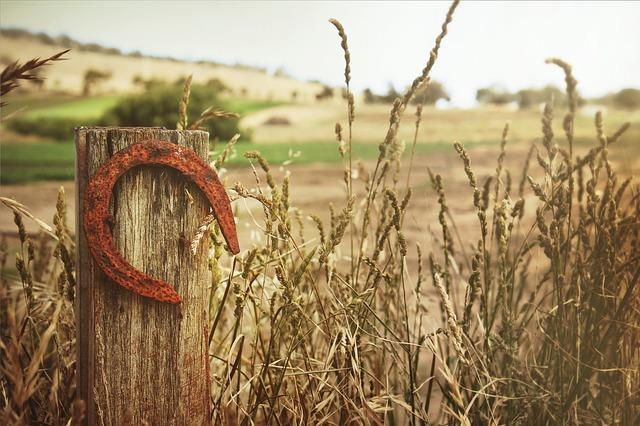 horseshoe-504821_640
